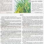 MalBusInsight_150220_rice